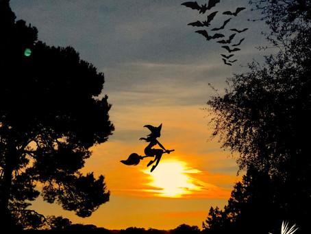Halloween Sunset on S'Almonia. Enjoy the Night 👻 !