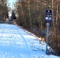 Trail at Fesserton Campground