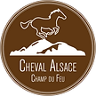 cheval-alsace-brun.png