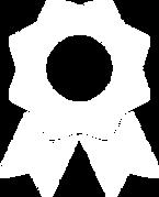 noun_Award_1602089.png