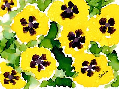 yellow pansies 0420 (2).jpg