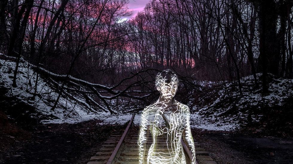 Defunct Railroad by David Rehor