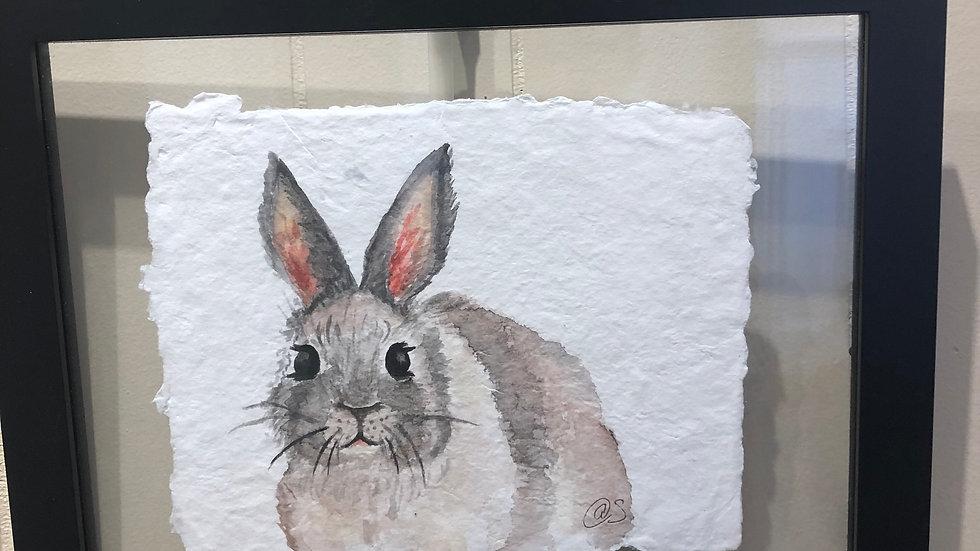 Some Bunny by Amanda Stroop