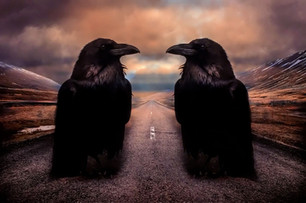 The Court of Ravens