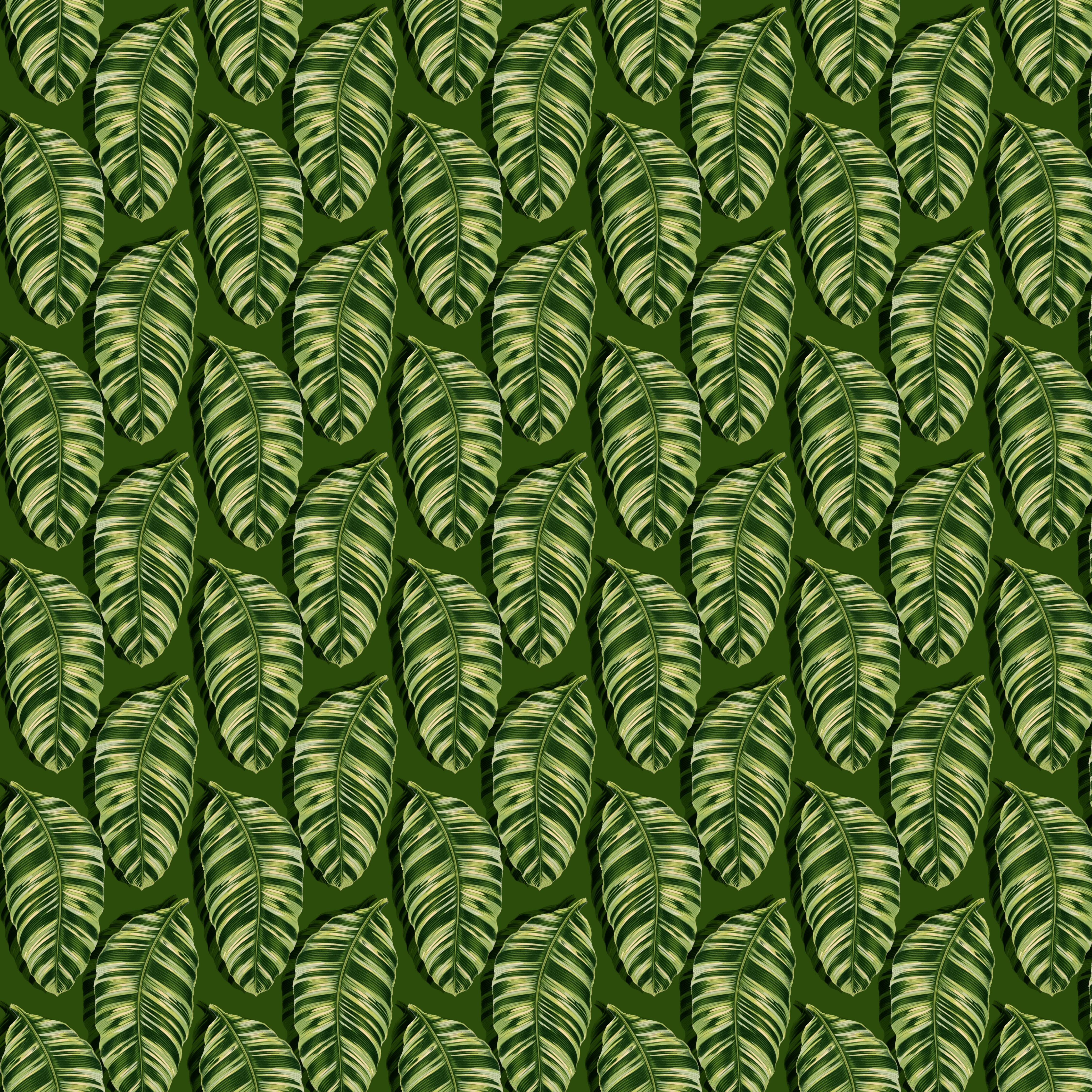 jungle 8 dk GR fill copy copy