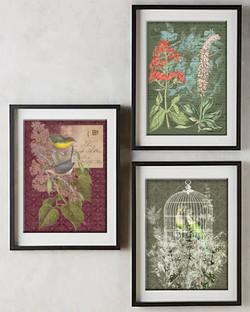 Farmhouse Floral pictures