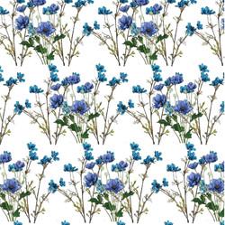 WILDFLOWR BLUES-05