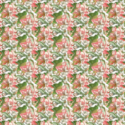 plle blossom dbl repeat