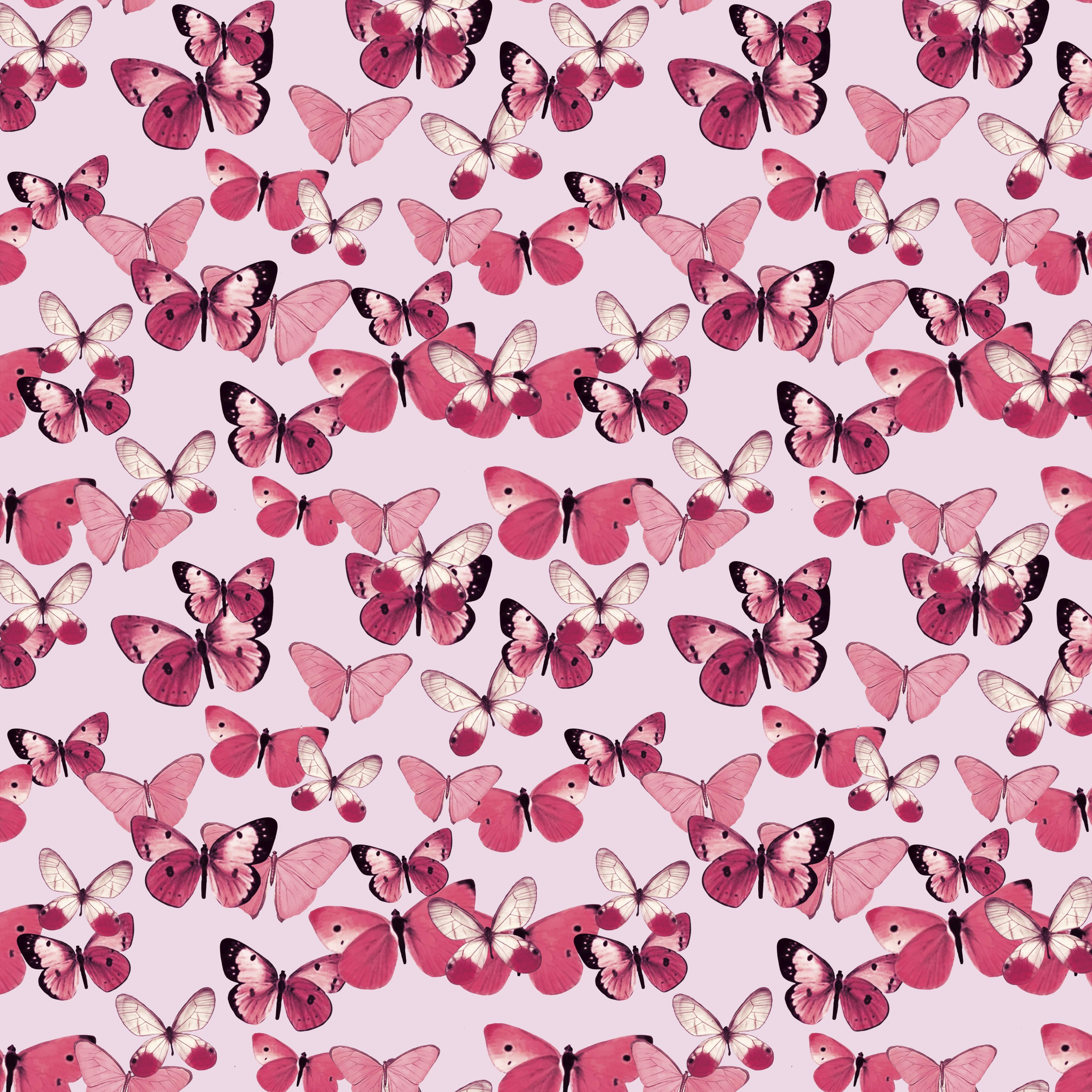 pink butterflies fill