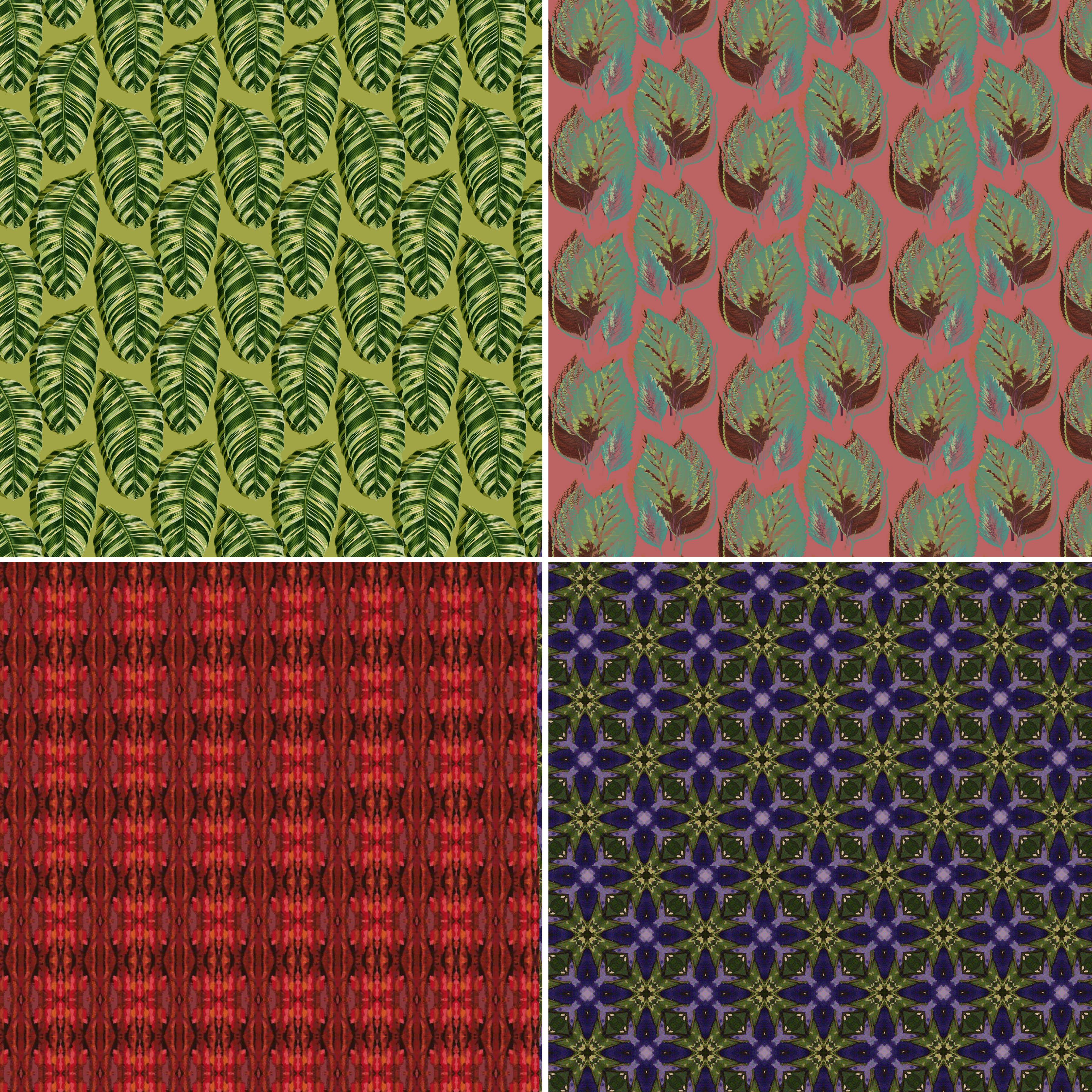 jungle patterns 3
