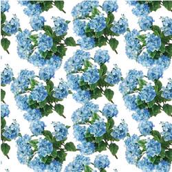 WILDFLOWR BLUES-08