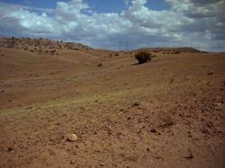 Property at Concho, AZ SE toward property