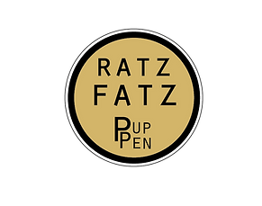 RatzFatzPuppen mobiles Puppentheater
