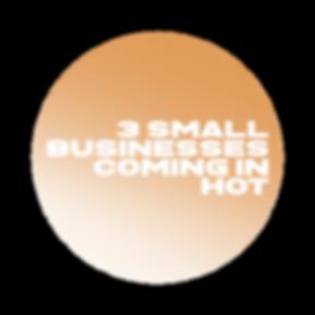 3 small biz_circle.png