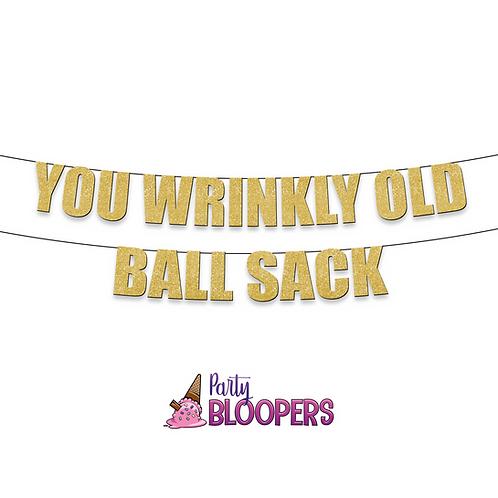 YOU WRINKLY OLD BALL SACK