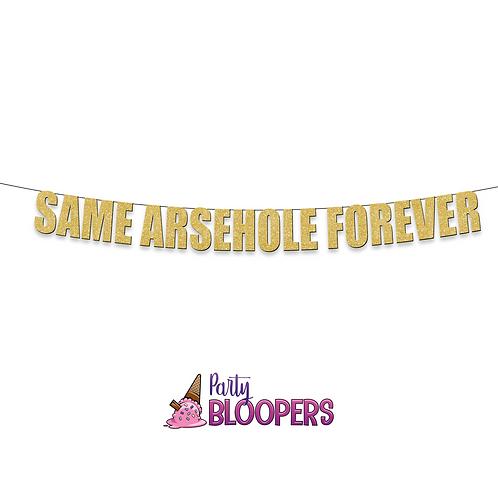 SAME ARSEHOLE FOREVER