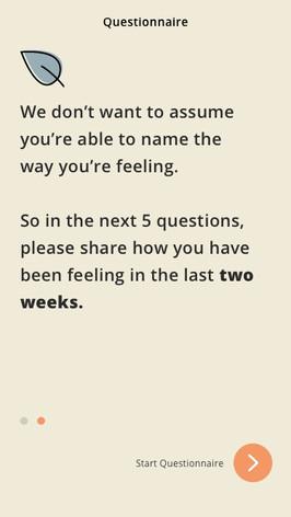 Questioniare Intro 2.jpg