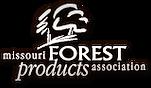 Logo-MFPA.png