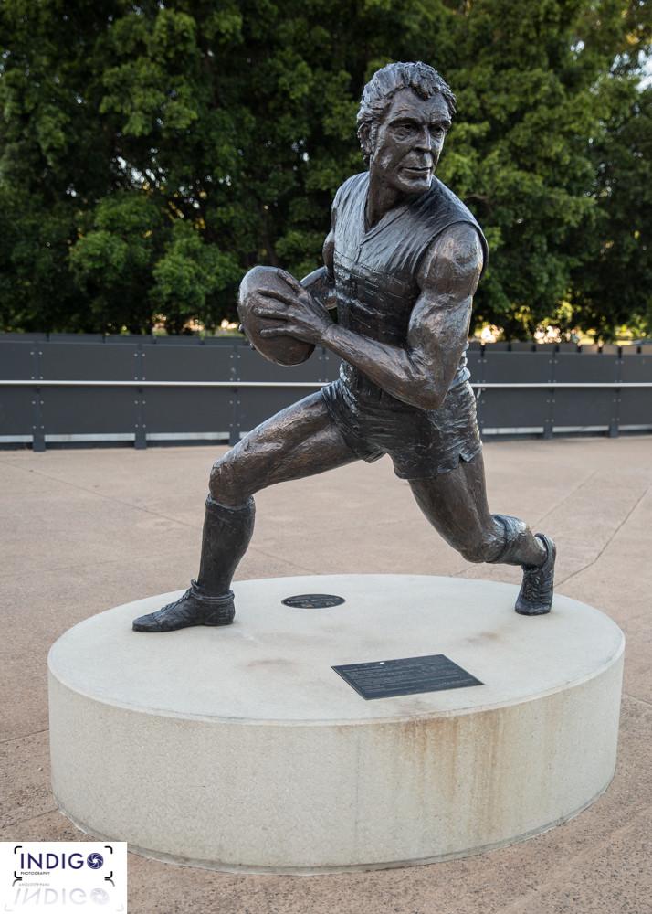 AFL at Adelaide Oval