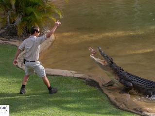 Australia Zoo -