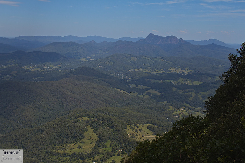 "View from the ""best of all lookout"" towards Mt Warning"