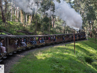 Puffing Billy / Dandenong Ranges