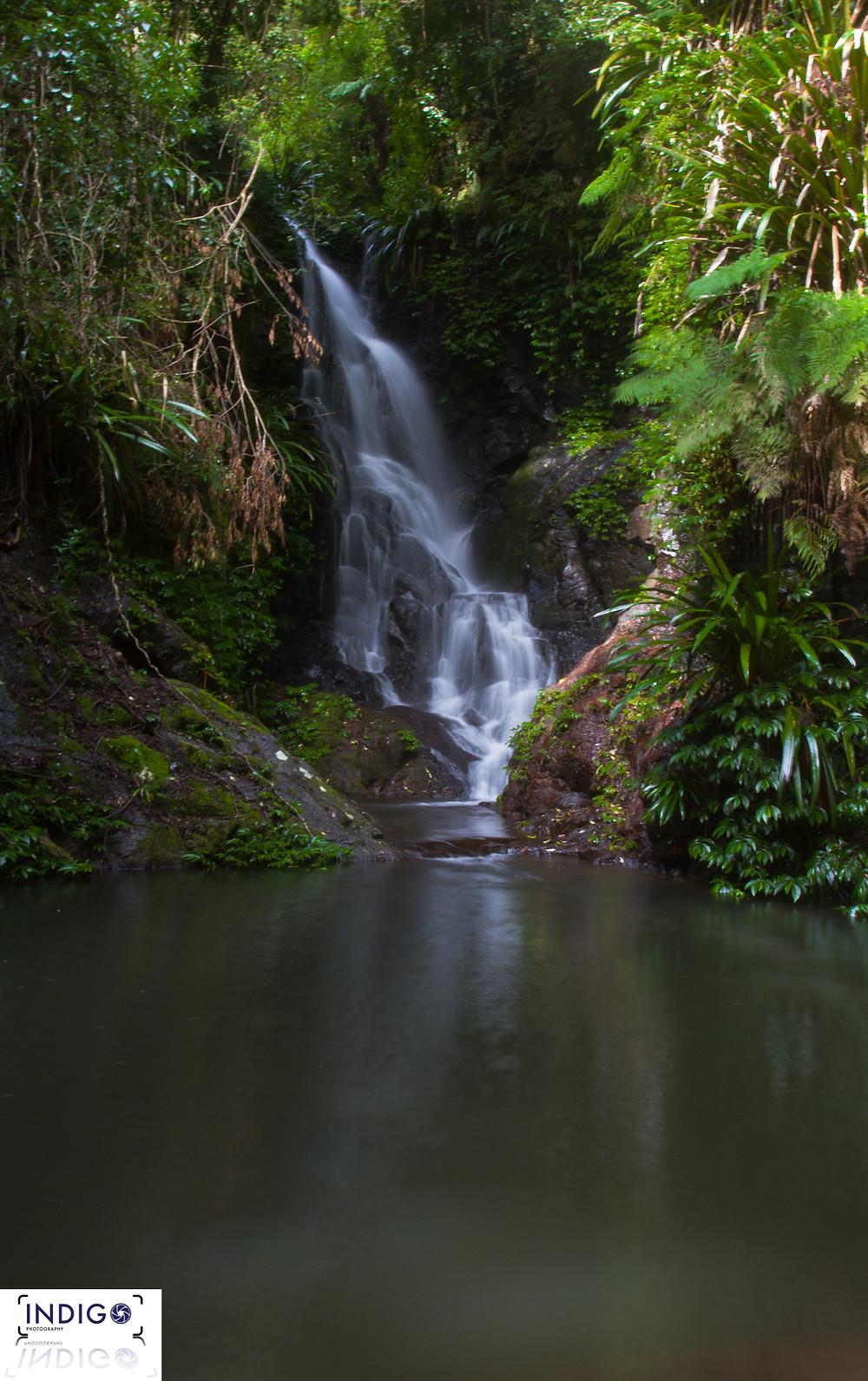 Elabana Falls on the Box Forest Circuit @ Lamington National Park