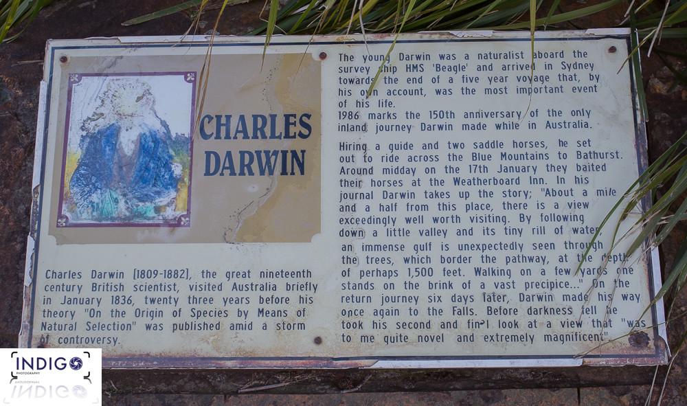 The Great Charles Darwin / Explorer