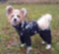fleecoveraller, billiga hundkläder, hundkläder, tuffa hundkläder