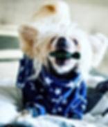 Hundoveraller Fleeceoveraller Orion_redi