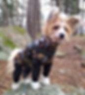 trikåoveraller, billiga hundkläder, hundkläder, hundoverall