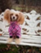 hundoveraller, fleeceoverall, hundkläder, fleeceoveraller till hund