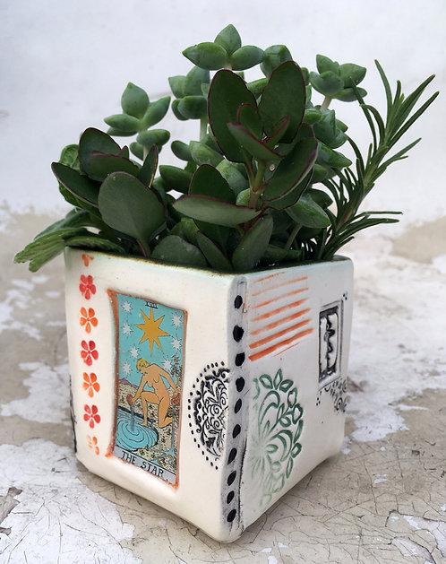Tarot Card (The Star) Succulent Planter