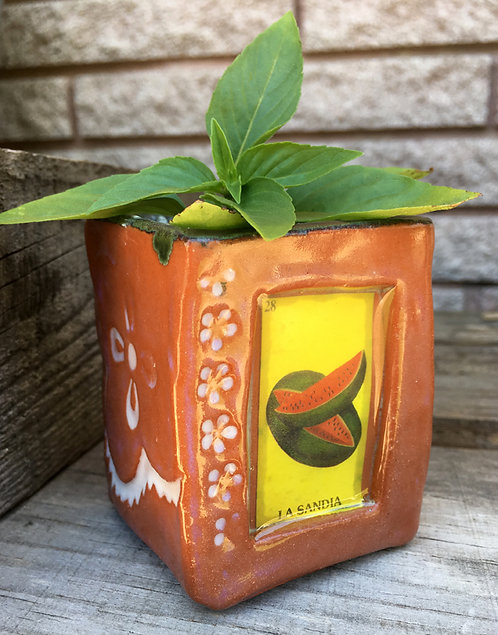 Lotería La Sandía (the watermelon) Succulent Planter