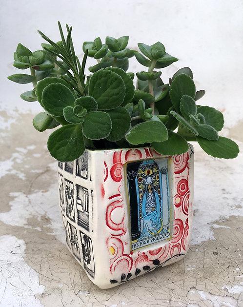 Tarot Card (The High Priestess) Succulent Planter