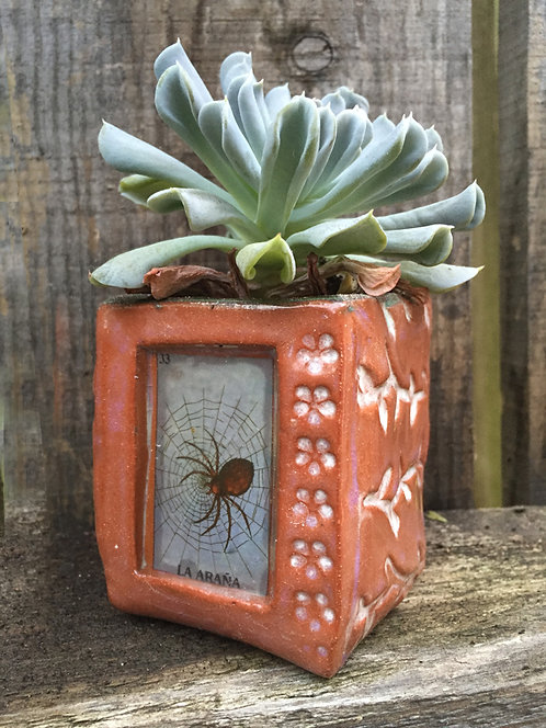 Lotería  La Araña  (the spider) Succulent Planter
