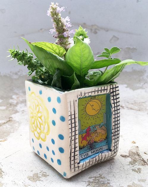 Tarot Card (The Moon) Succulent Planter