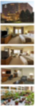 hotel1.PNG