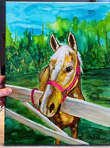 horse pet commission.jpeg