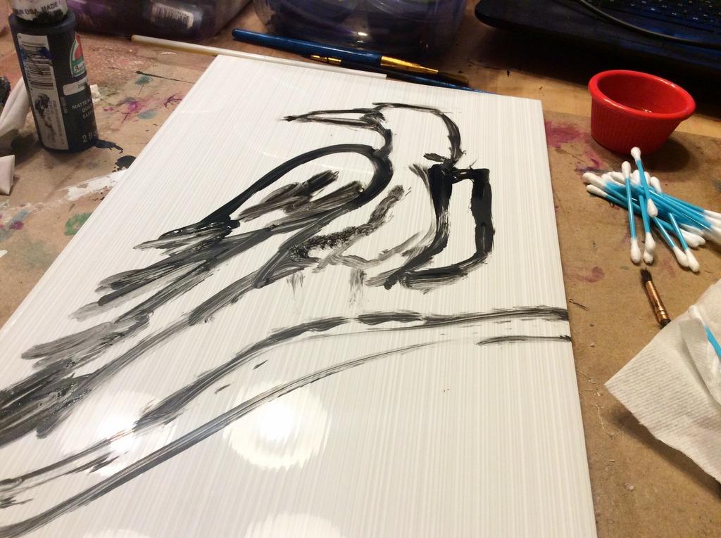 raven pro2