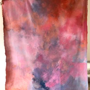 7'x8' canvas backdrop