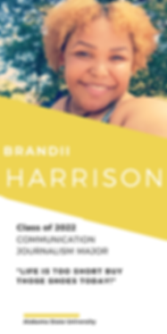 Brandi Harrisson.png