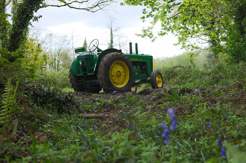 Greeting Card - John Deere 'Bluebell Wood'