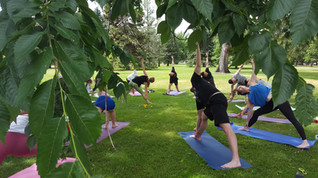 Midsummer yoga 4