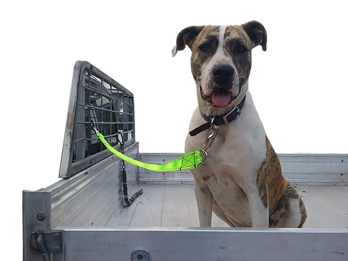 Dog Quick Release Ute Lead