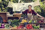 Myall Coast Tours organic market selling fresh produce