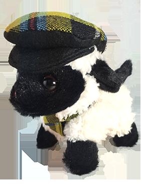 Cornish Tartan Sheep