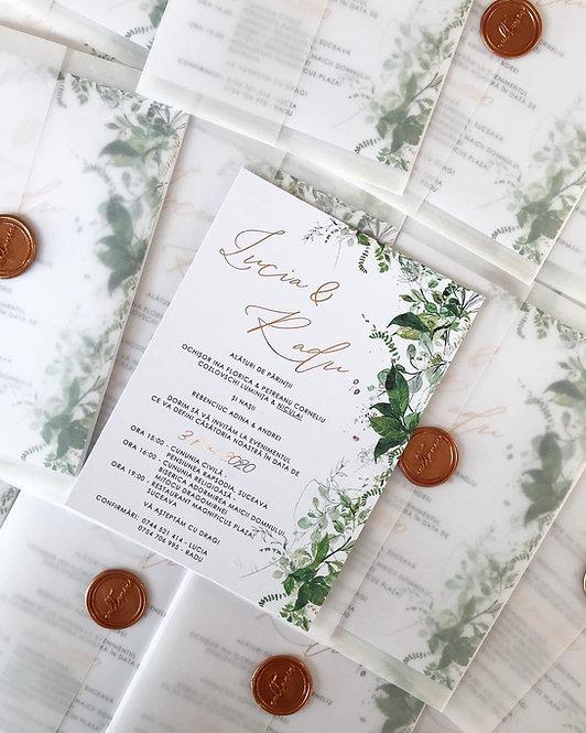 Invitație de nuntă Ivy cod 20-19