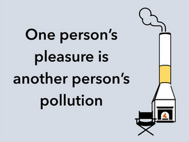 Wood burning is the single biggest cause of particle pollution