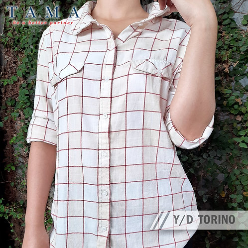 Y/D Torino